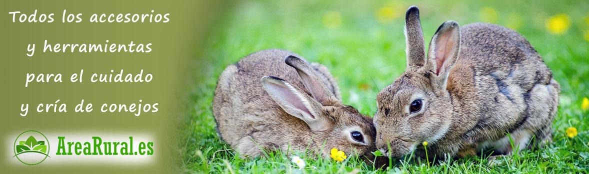 Cuidado y cria de conejos